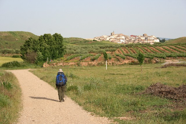 The Camino de Santiago-A Journey of Rediscovery
